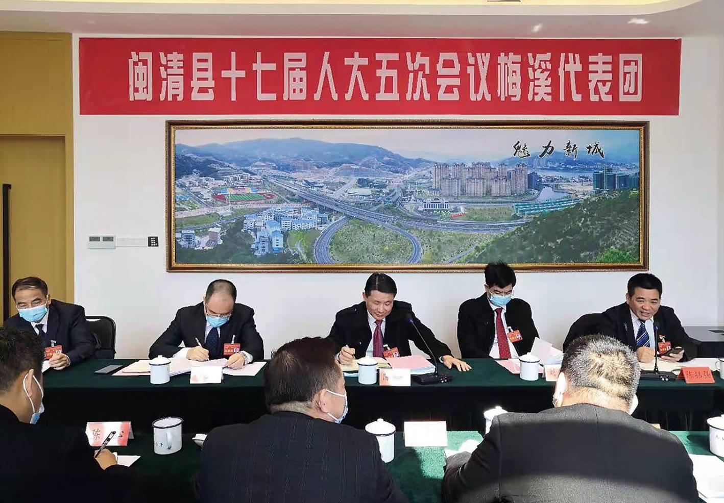 县领导参加县十七届人大五次会议代表团审议